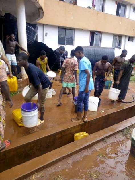 Breaking!!!: Snake Found And Killed In Kogi Versity Hostel Water Tank (See pictures)