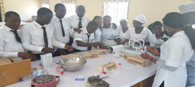 1000 Bauchi College Of Health Students Risk Withdrawal As Govt Stops Scholarship