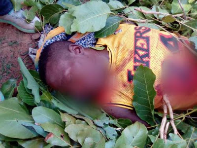 Women, Children Hack To Death In An Attack In Kaduna By Fulani Herdsmen