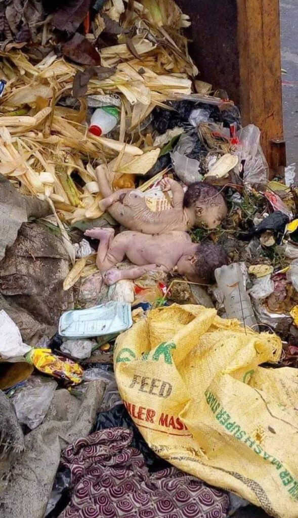Disturbing Photos: Lifeless Twins Babies Found Dumped In Refuse Site In Calabar