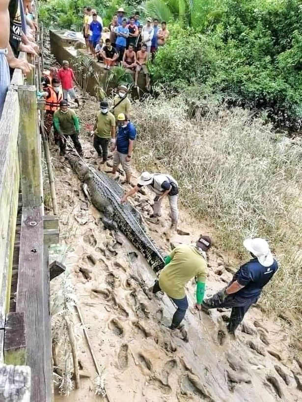 Remains Of A 14-year-old Boy Found Inside Crocodile After 4 Days Of Missing (Photos)