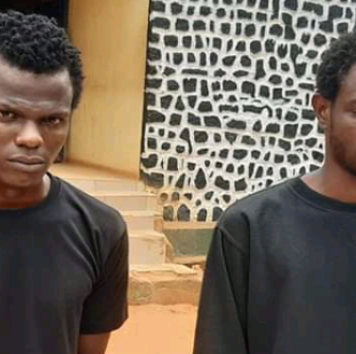 Police Arrests 2 Brothers Over Armed Robbery In Anambra State