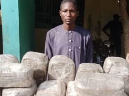 Police Uncover Family Dirty Business, Arrests Son And Mother With 49 Parcels Of Indian Hemp